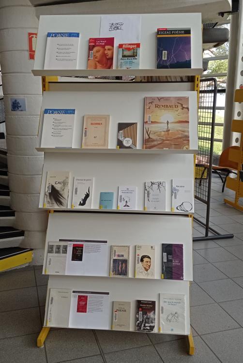 Bibliothèque Wangari Maathai