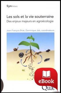 Les sols et la vie souterraine : Des enjeux majeurs en agroécologie