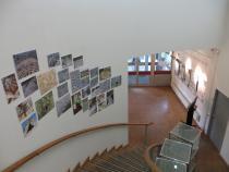 Expo à la bibliothèque