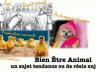 Sélection d'ouvrages sur le bien-être animal