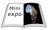 Mini expo